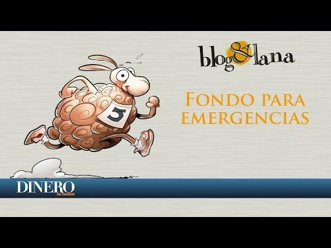 Fondo para emergencias | Blog y Lana