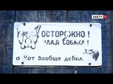 Семье с ребенком- инвалидом чиновник Пономарев оставил жить на руинах