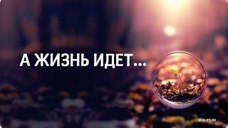 Красивое стихотворение: 'А жизнь идет...'