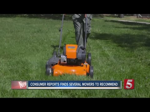 Consumer Reports Examines Best Buy Lawn Mowers
