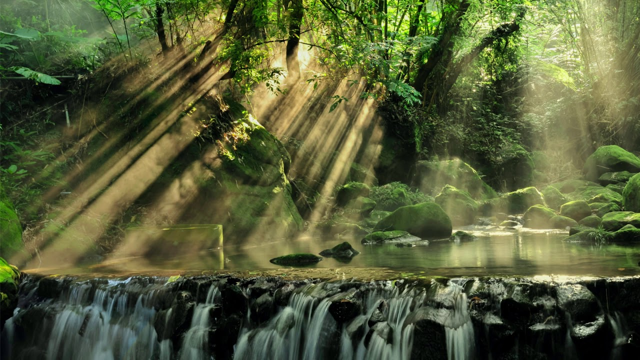 Relaxing Piano Music with the Sound of Nature, Relaxation Music, Study Music, Sleep Music