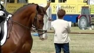 как сделать сбор лошади