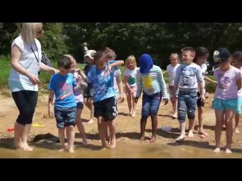 Year 2 Visit To Cotswold Country Park & Beach