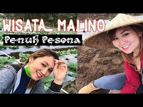 tempat-wisata-di-malino-sulawesi-selatan-bikin-kamu-betah