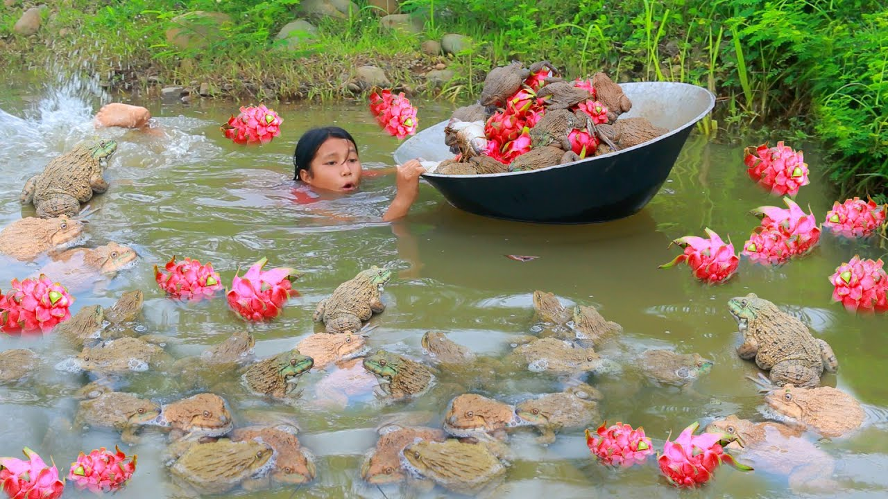 Awesome Women Find food meet frog and dragon fruit in water & - Fried frog for food for dog