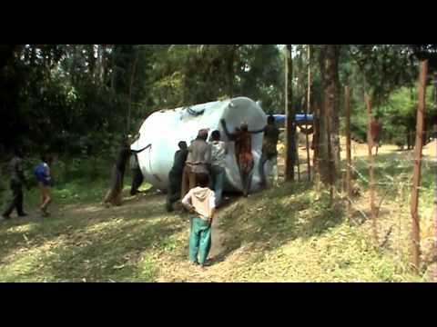 Sázení stromků - Etiopie