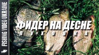 ОТЛИЧНАЯ ФИДЕРНАЯ РЫБАЛКА НА ДЕСНЕ В ПУХОВКЕ | FishingVideoUkraine
