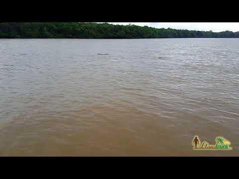 Circuito Amanecer en el Piedemonte Llanero - Llanotours Agencia de Turismo Llanero