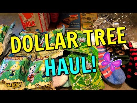 DOLLAR TREE HAUL! Virginia Beach, Virginia Stores!   September 13, 2019   LeighsHome