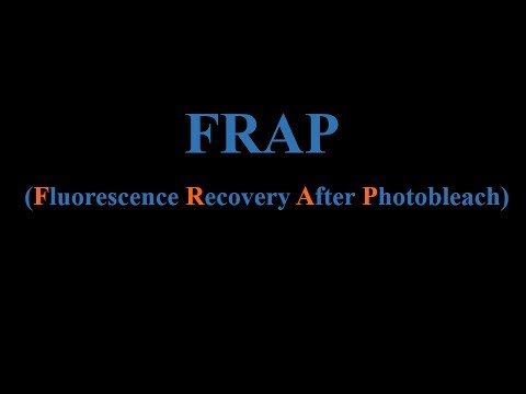 FRAP  (Fluorescence Recovery After Photobleach)- Hindi