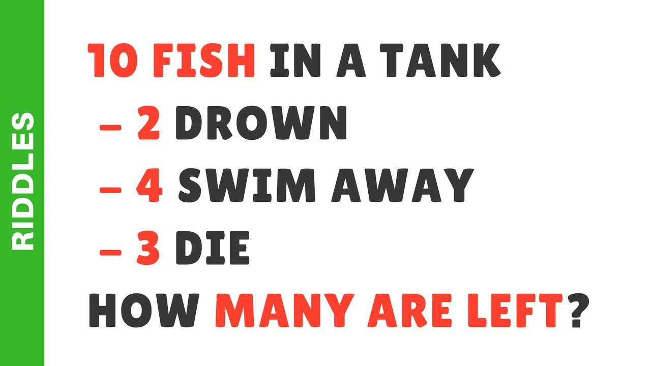 10 fish are in a tank riddle answer fish riddle youtube