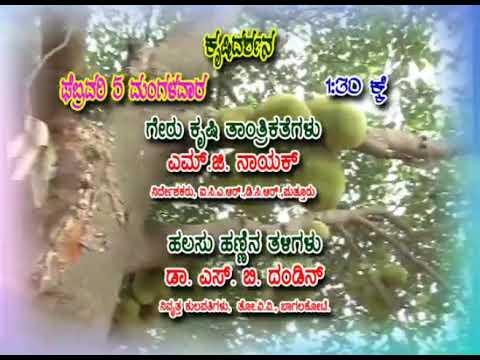 Krishidarshan Programs on DD Chandana   05 Feb 19   Promo