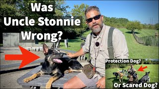 Protection Dog or Scared Dog 3 | Was Uncle Stonnie Wrong?