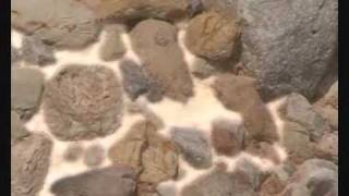 rocas sedimentarias.wmv