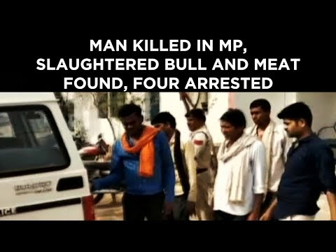 Man killed in MP, slaughtered bull and meat found, four arrested