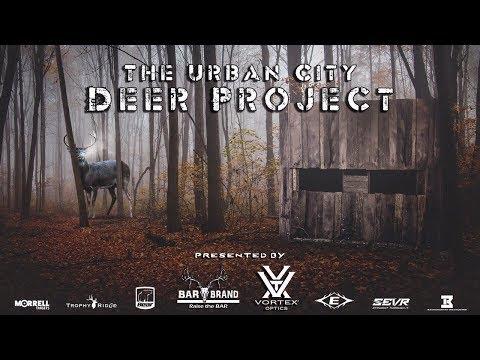 Big Urban City Buck - The Urban City Deer Project  - Film