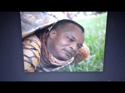 8% SOUASSOU N'GBESSO ABBEYS MBOCHI HAOUSSA CHERCHENT LES MORTS TRÈS IMPORTANT DANS LES CIMETIÈRE