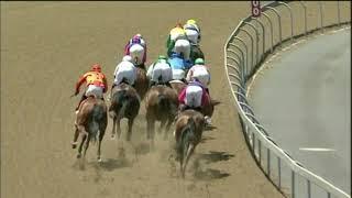 Vidéo de la course PMU PRIX GOLD CIRCLE HORSES TO FOLLOW PODCAST MAIDEN PLATE