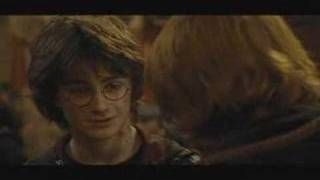 Stick to the Status Quo - Harry Potter