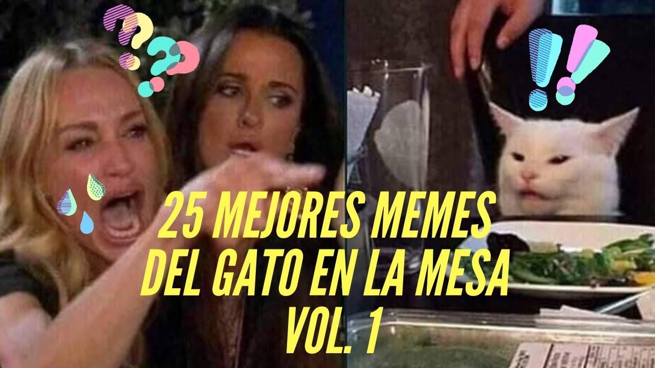 Meme Del Gato En La Mesa 25 Memes Mas Divertidos Vol 1 Youtube