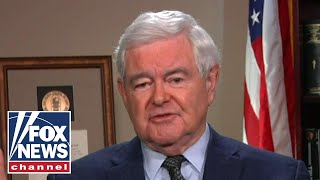 Gingrich: Democrats have long tradition of election dishonesty
