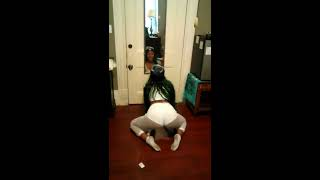 Add it up migos aaliyah monay tryna twerk funny