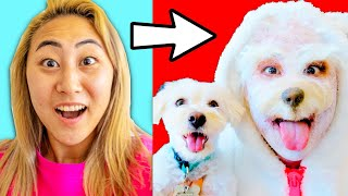 I TRANSFORMED INTO MY DOG FOR A DAY!!