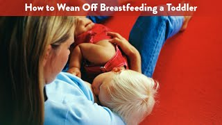 Weaning Off Breastfeeding a Toddler   CloudMom