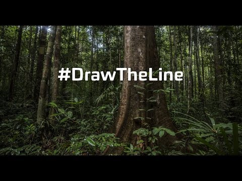 Draw the Line – VR
