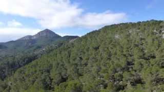 Wandern Mallorca - Rund um den Puig de na Fatima von Puigpunyent