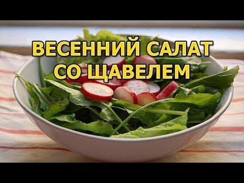 Свежий весенний салат со щавелем