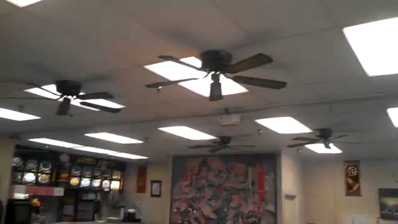 Encon Casanova Deluxe Ceiling Fans In A Chinese Restaurant