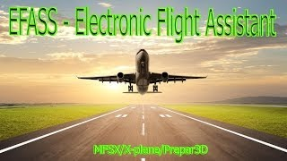 EFASS - Electronic Flight Assistant для MFSX/X-plane/Prepar3D (VATSIM) Rus