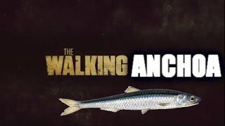 THE WALKING ANCHOA | MRGRANBOMBA CARA ANCHOA
