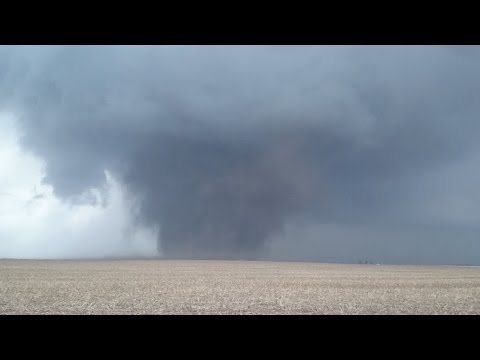 Illinois Tornadoes & Severe Warned Storm Coverage - 2/28/2017