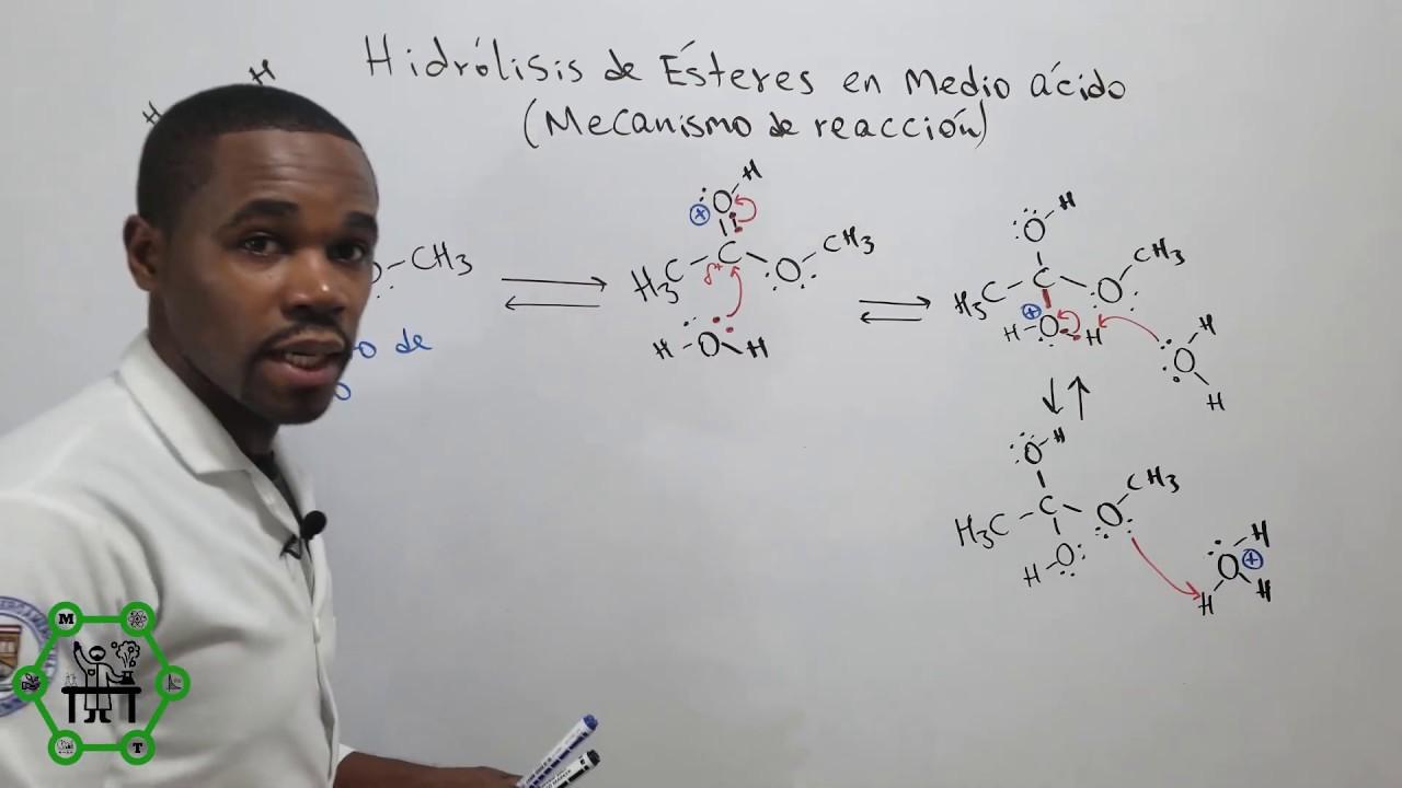 Hidrólisis Ácida de Ésteres | Mecanismo de Reacción