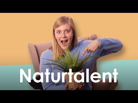 die-power-der-natur-–-wissenschaftlich-erklärt