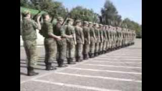 Askarlar Xarakati 20123gp