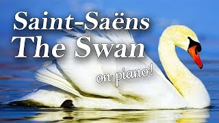 The Swan (Le Cygne) by Saint-Saëns - Piano Tutorial (Beautiful Piano Music)