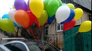 видео Связка 50 воздушных шариков
