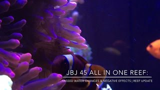 missed water changes negative effects   reef update