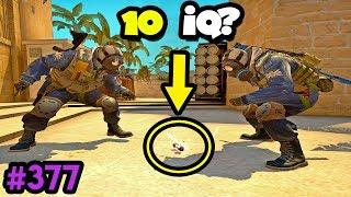 300 IQ DECOY vs 10 IQ team - CS:GO BEST ODDSHOTS #377