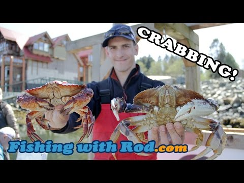 How To Fish: Crabbing In Vancouver