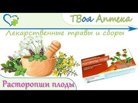 Расторопши плоды - показания, описание, отзывы (лечение заболеваний печени)