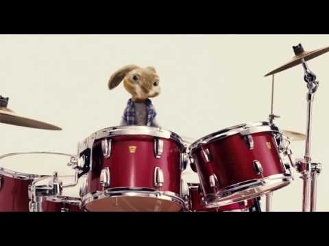 Bunny Playing Drums - Happy Head Massage
