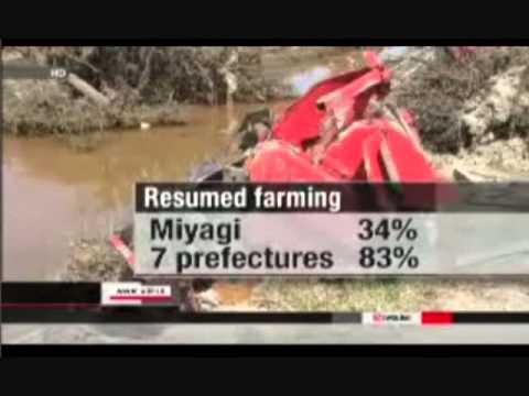 Beware-fishing & Farming Resuming In NE Japan / Concerns Persist Over Radiation In Rice