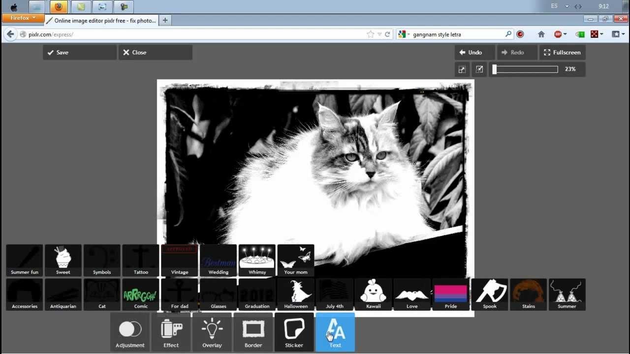 Programa online para editar fotos efecto vintage blanco for Programa para disenar closets online
