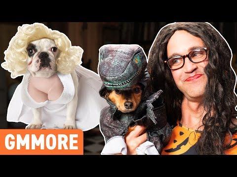 Cutest Dog Halloween Costumes