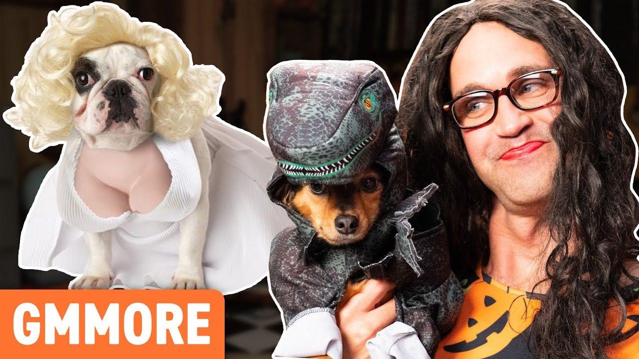cutest-dog-halloween-costumes