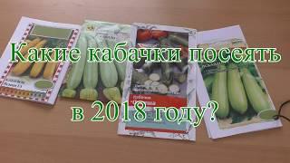 Какие кабачки посадить в 2018г? Сорта и гибриды для открытого и закрытого грунта.